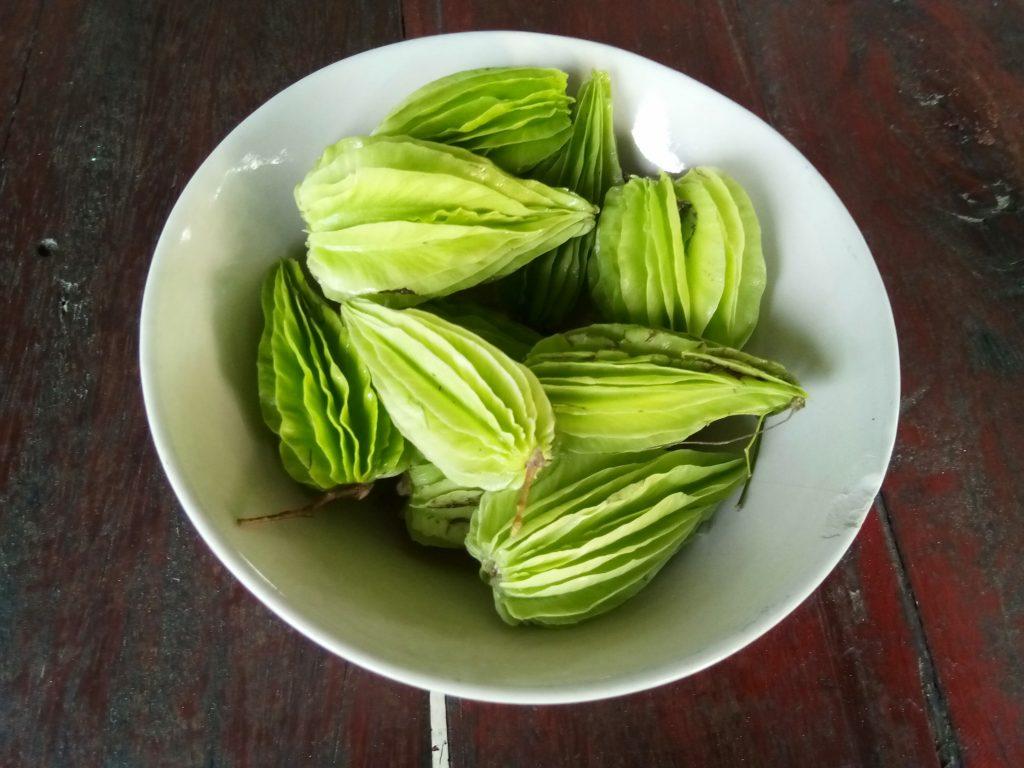 Fresh wild vegetables Thailand